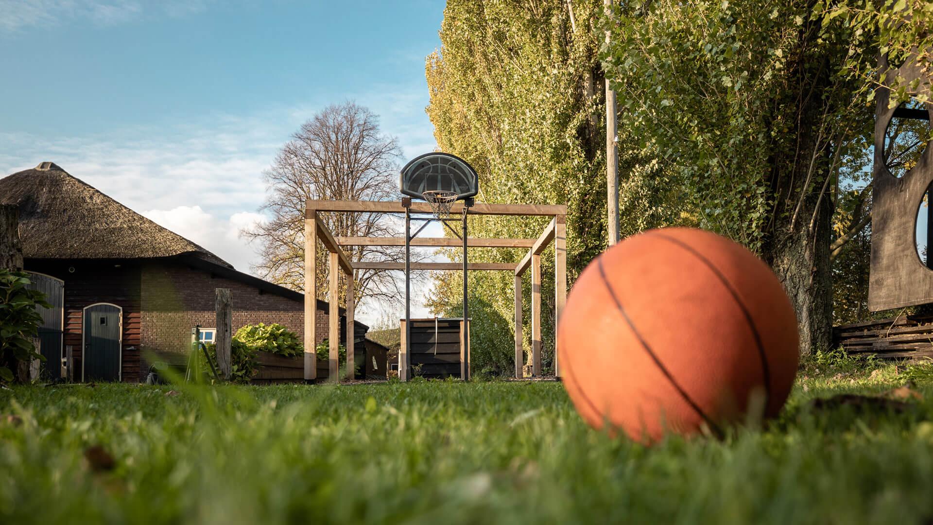 de wilgen erp basketbalveld