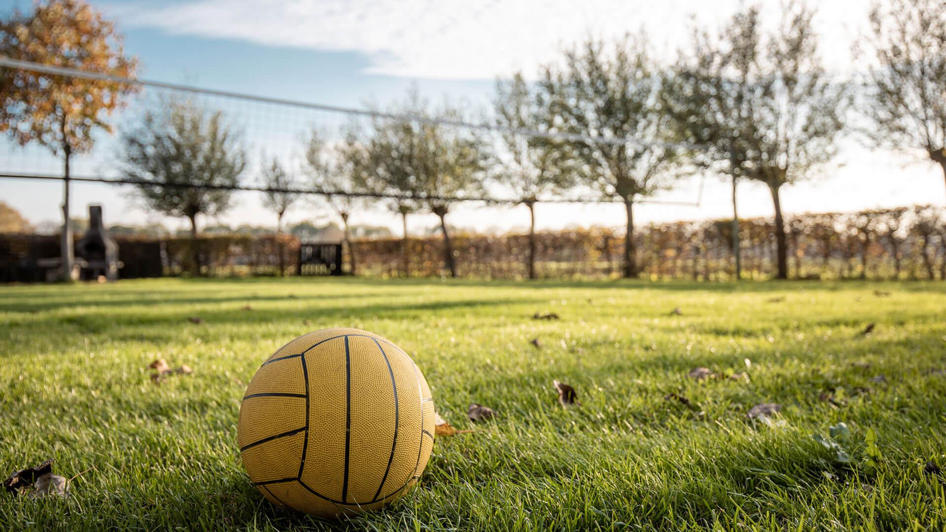 de wilgen erp volleybalveld